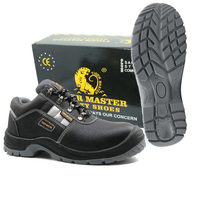 How to prevent the hurt from the job?--use TIGER MASTER brand safety shoes