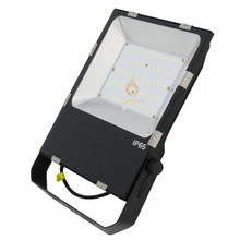100W IP65 Outdoor Square Garden Park Area Tunnel Tennis Court Flood Lighting LED with Lens