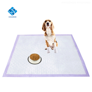 China Manufacture of The Disposable Pet Puppy Dog Training Pee Pad