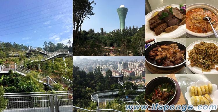 Activités de consolidation d'équipe du secteur du commerce extérieur - Life Nano-Plastic Product (Zhangzhou) Co., Ltd from lfsponge