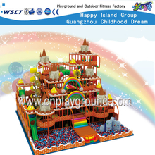 Amusement Park Castle Playground Equipment Toys for Kids (HE-06901)