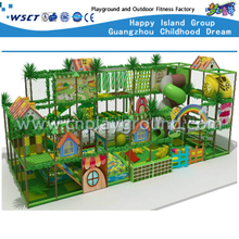 Animal Indoor Playground Adventure Play Equipment(H14-0804)