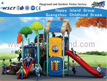 Tree House Type Children Galvanized Steel Playground for Backyard (HF-16202)