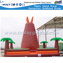 Outdoor New Design Inflatable Sport Game Children Climber (A-10505)