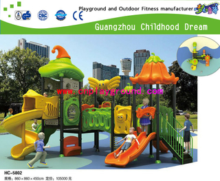 Hot Sale New Bright Color Outdoor School Vegetable Galvanized Steel Playground Play Structure (HC-5802)