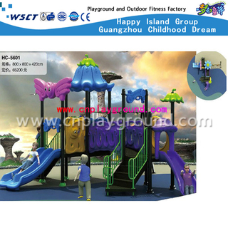 New Design Blue And Purple Outdoor Play Structure Outdoor Kids Playground Set(HC-05601)