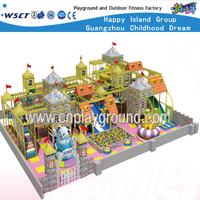 Large Castle Indoor Playground Equipment for Children Play (HE-06801)