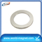 Cheap zinc coated ring shaped neodymium magnet