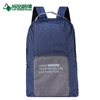 2017 Hot selling foldable backpack outdoor travel folding backpack (TP-BP303)
