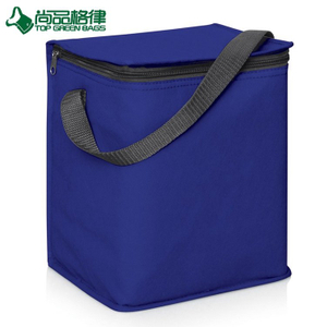 High Quality Customized Insulated Shoulder Lunch Travel Cooler Bag (TP-CB480)