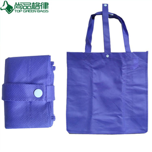 Fashion Shopping Bag for Promotion Eco Foldable Bag (TP-FB084)