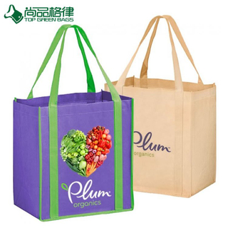 Green Printed Shopping Rote Promotional Bag (TP-SP160)