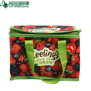 Full Colors Printing Laminated PP Non Woven Lunch Cooler Bag (TP-CB460)