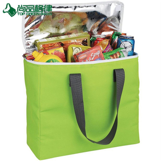New Collapsible Deluxe Folding Cooler Outdoor Insulated Bag for Food (TP-CB487)