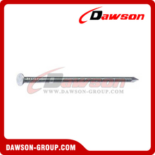 DS Common Nail Products Iron Wire Products