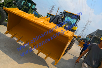 Customer order LW400FN wheel loader